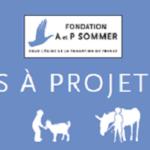 Fondation Adrienne et Pierre Sommer - médiation animale - Appels à projets 2020