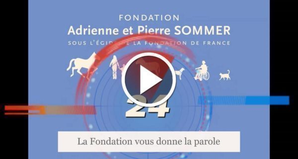Médiation animale et confinement - Alain Lambert