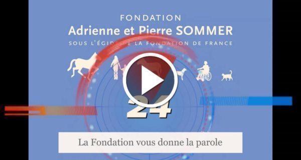 Médiation animale et confinement - ITEP Brunehaut